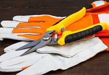 tools & gloves, Pruning Accessories