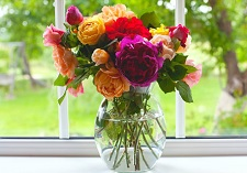 Standard, Roses